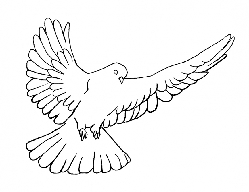 doves coloring pages two turtle doves coloring page coloring pages doves