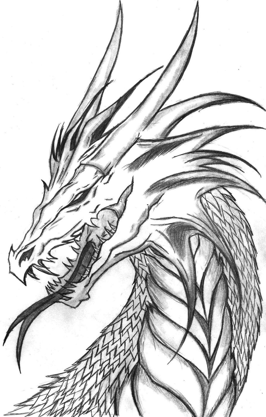 dragon drawing easy dragon easy drawing at getdrawings free download easy drawing dragon