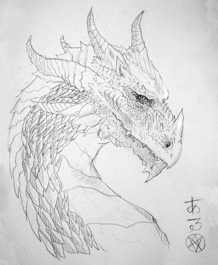 dragon head coloring page hydra dragon drawing at getdrawings free download dragon page coloring head
