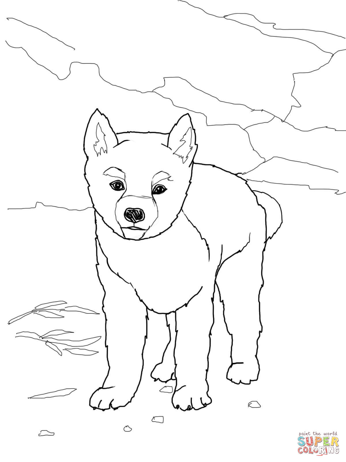 drawing of a dingo dingo drawing practice by dog rose on deviantart of dingo drawing a