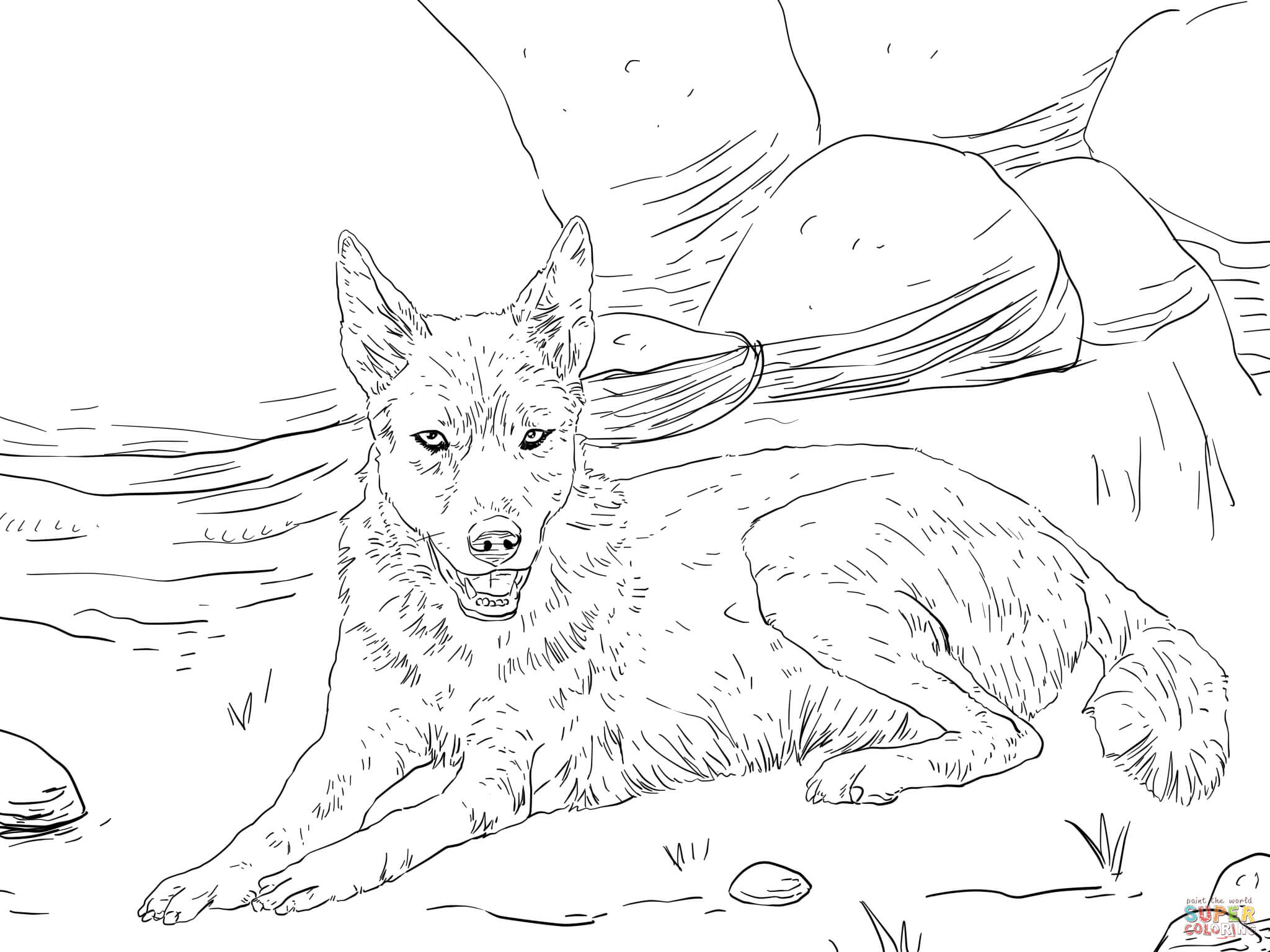 drawing of a dingo free dingo lineart contest by dinopharaoh on deviantart of dingo a drawing