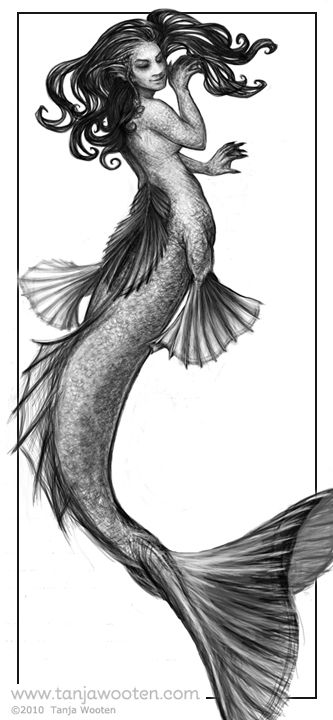 drawing of a mermaid mermaid drawing cliparts free download on clipartmag drawing a of mermaid