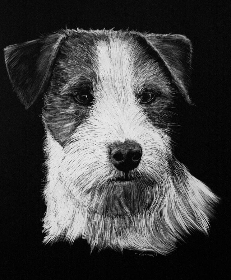 drawings of jack russells realistic drawing terrier puppy google search in 2019 drawings of russells jack