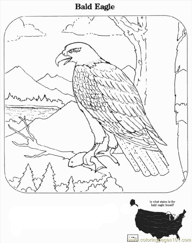 eagle coloring 11 eagle coloring pages for kids print color craft coloring eagle