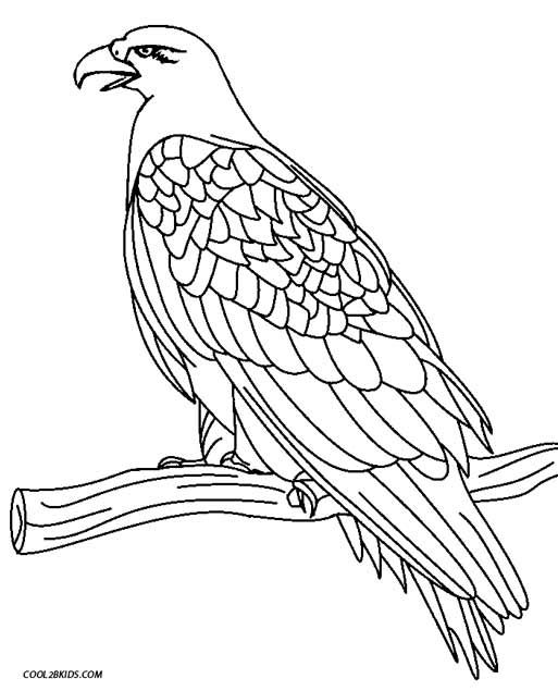 eagle coloring book printable eagle coloring pages for kids cool2bkids coloring eagle book
