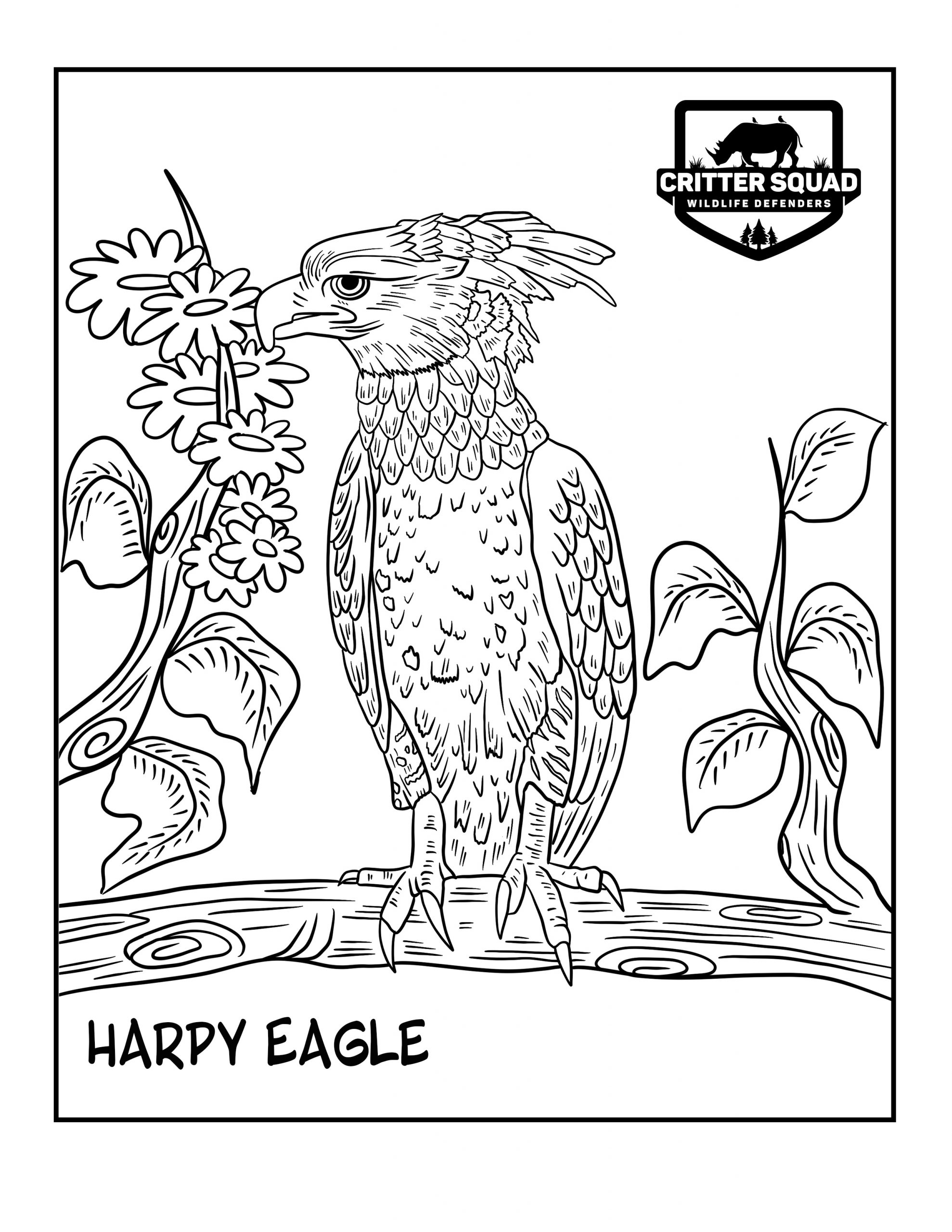 eagle coloring eagle coloring pages download and print eagle coloring pages eagle coloring