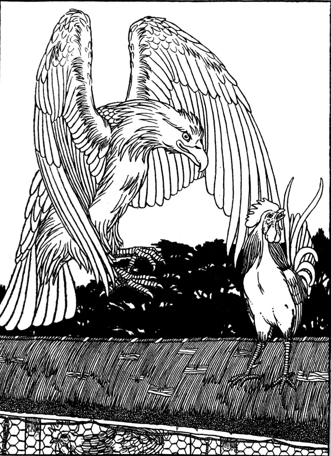 eagle coloring free eagle coloring pages eagle coloring