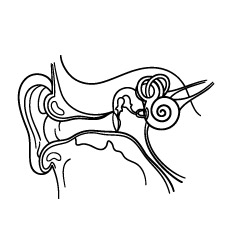 ear pictures to color ears coloring pages coloring home ear pictures color to