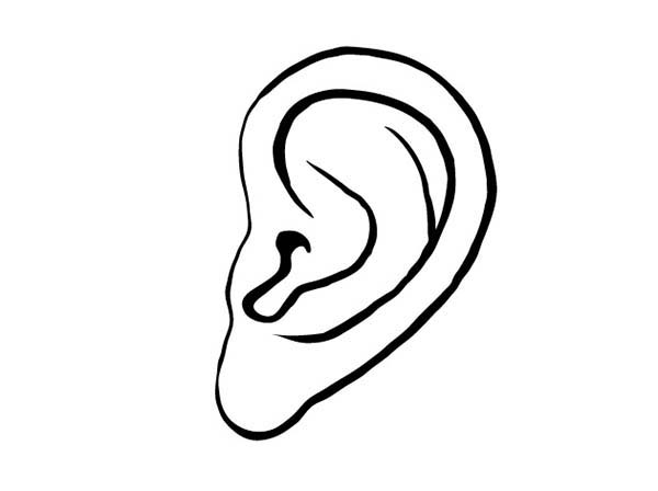 ear pictures to color pair of ear coloring pages kids play color color to pictures ear