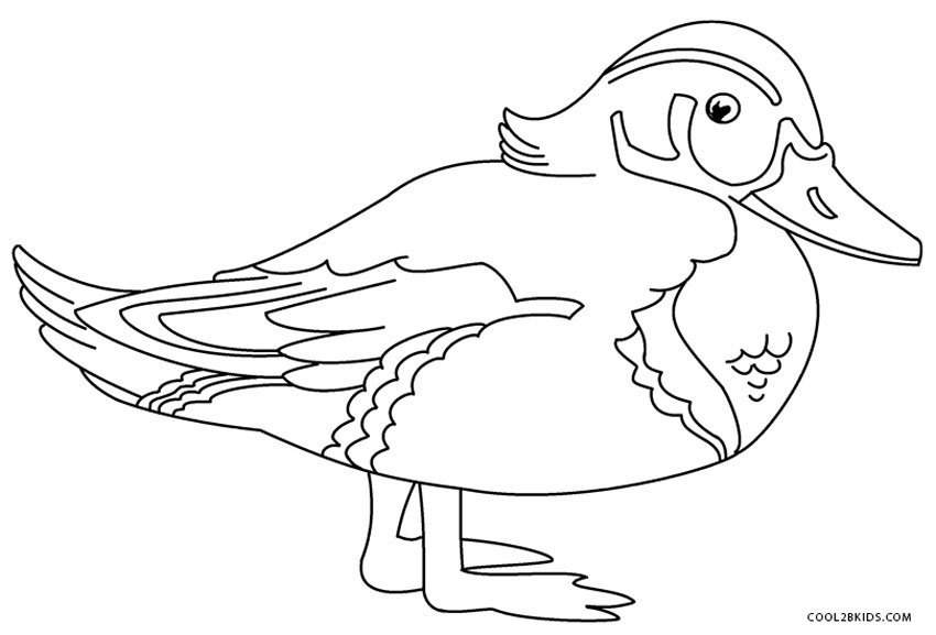 easy duck coloring pages duck coloring pages for kids preschool and kindergarten coloring duck easy pages