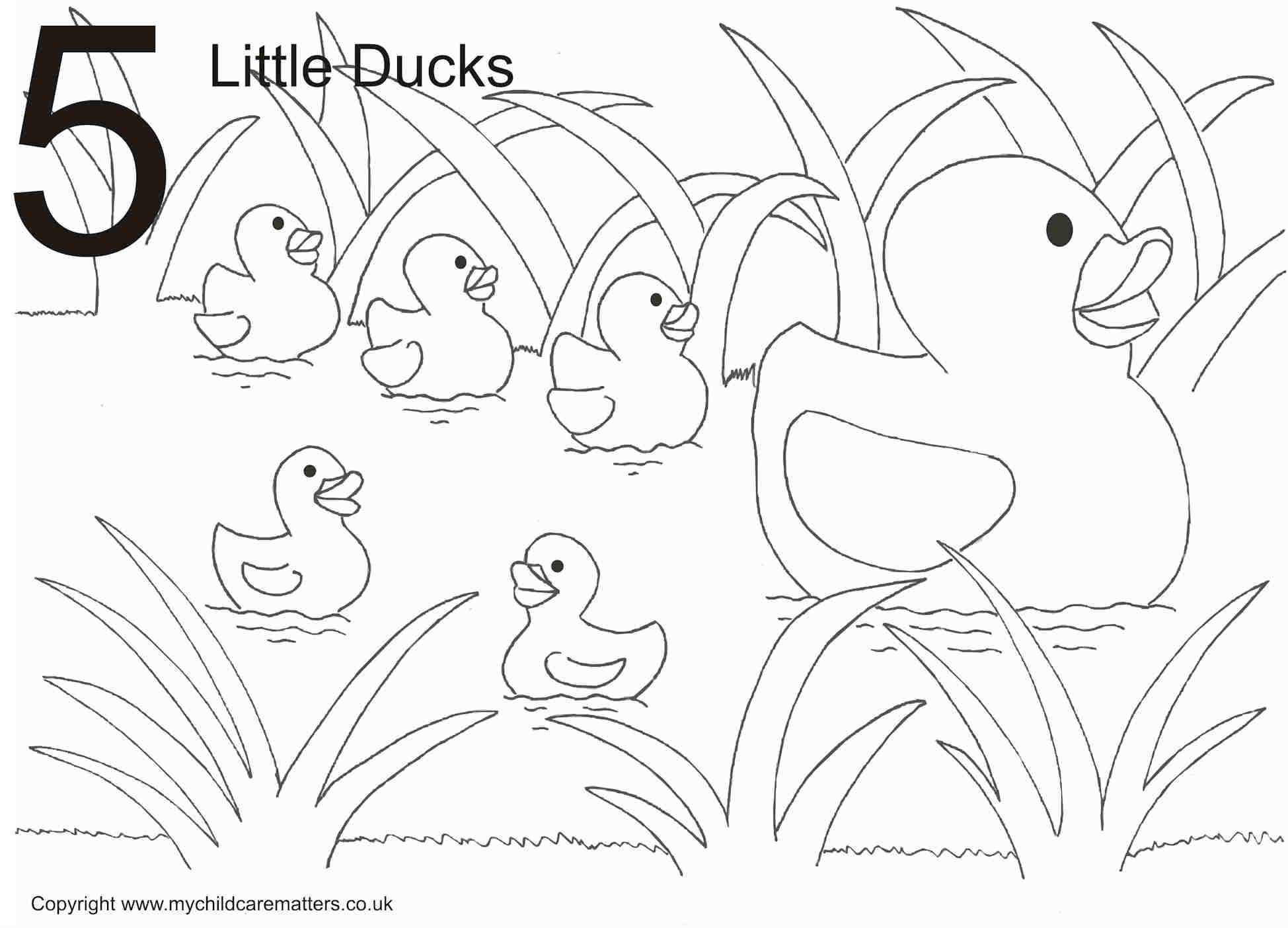easy duck coloring pages duck coloring pages for kids preschool and kindergarten coloring easy pages duck
