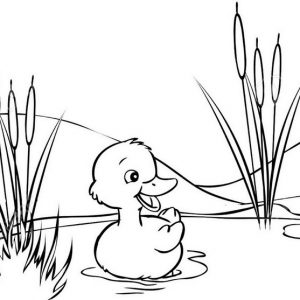 easy duck coloring pages rain duck april coloring page wecoloringpagecom easy pages duck coloring