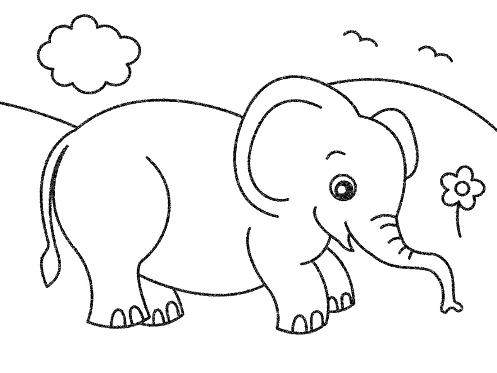 elephant coloring baby elephant coloring pages at getdrawings free download elephant coloring