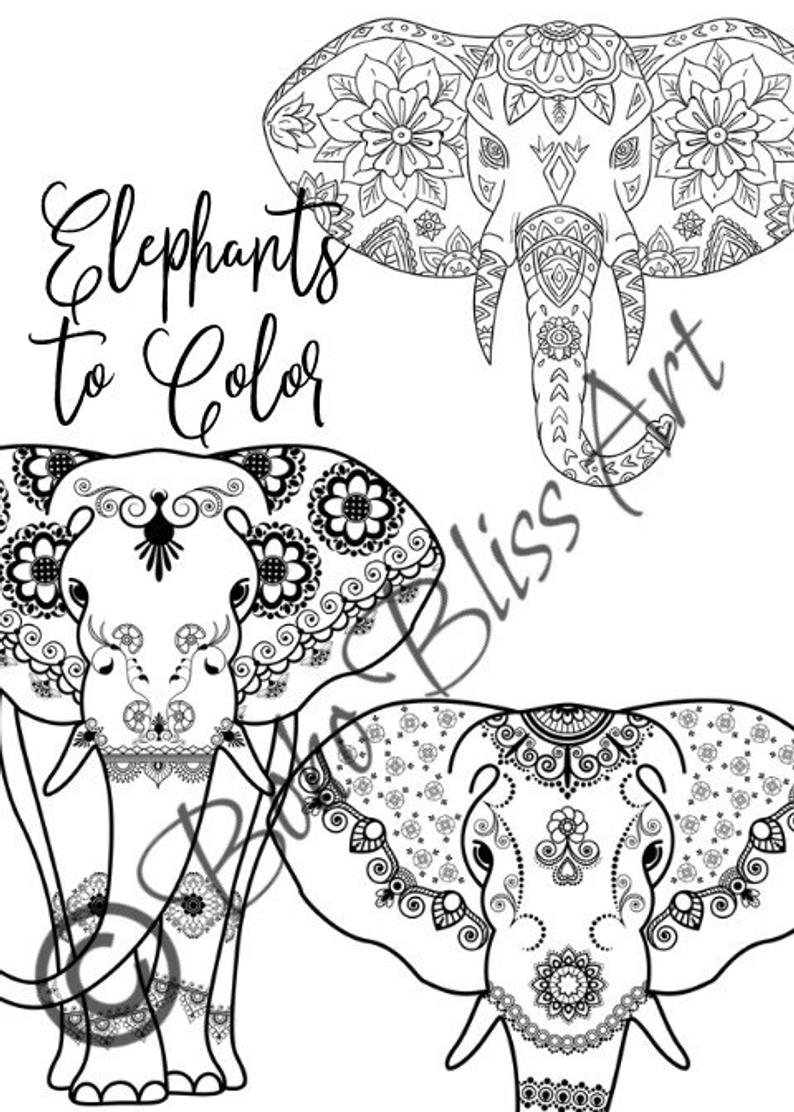 elephant coloring elephant coloring pages free download on clipartmag elephant coloring