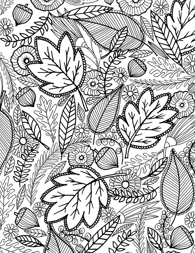 fall themed coloring pages a fall coloring page for you Раскраски pinterest fall themed coloring pages