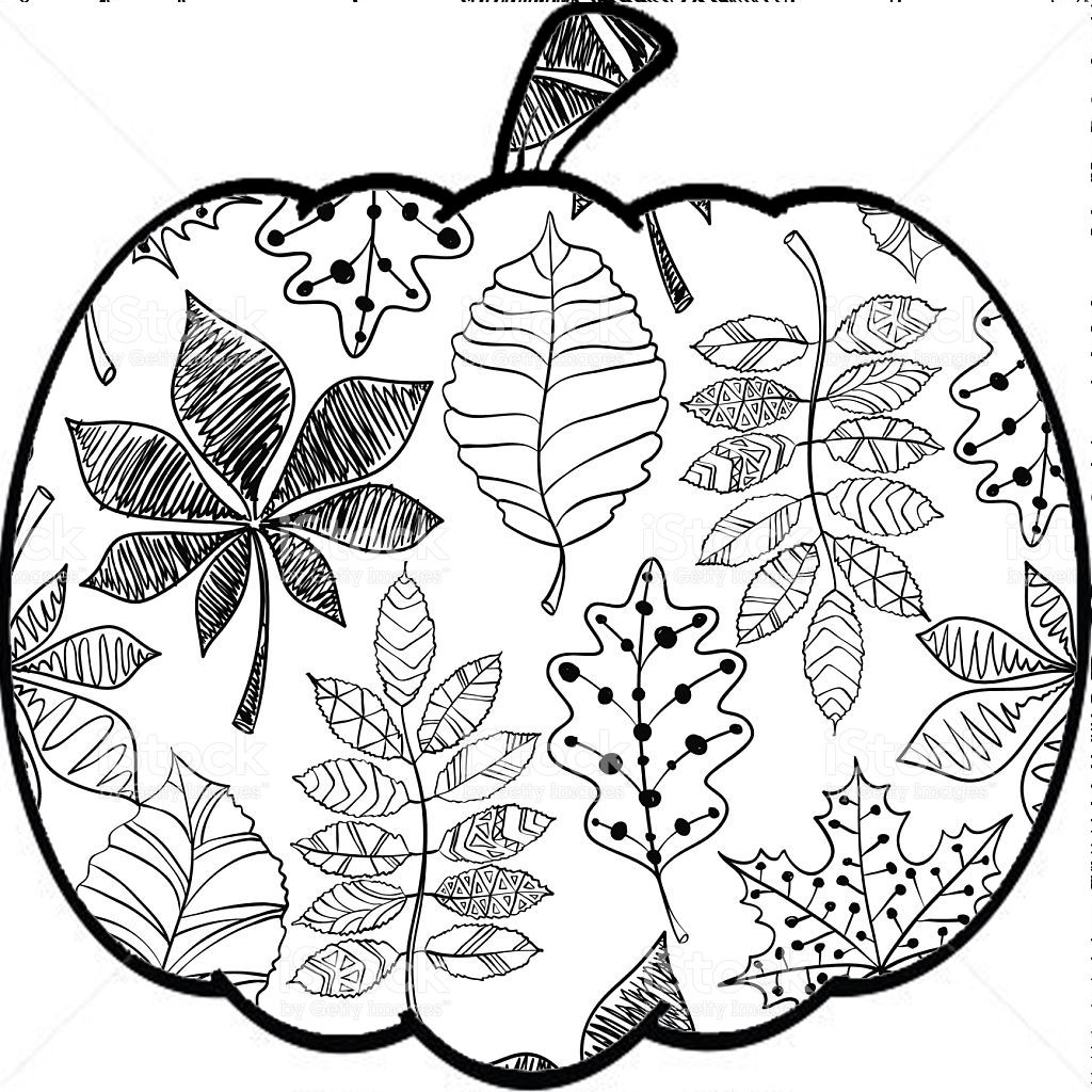 fall themed coloring pages autumn harvest coloring page free printable coloring pages pages themed fall coloring