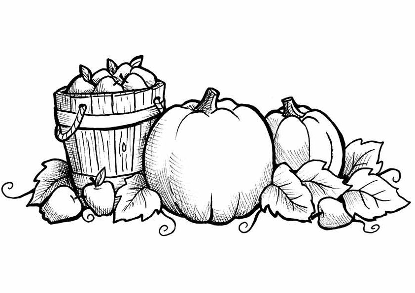 fall themed coloring pages free printable fall coloring pages for kids best coloring themed fall pages