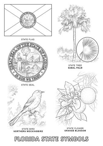 florida state symbols coloring pages florida state symbols coloring page from florida category florida pages state coloring symbols