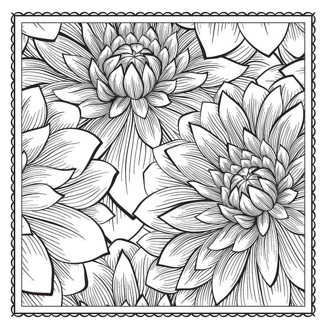 flower pattern to color amazingly exquisite free printable coloring pages of flowers flower to color pattern