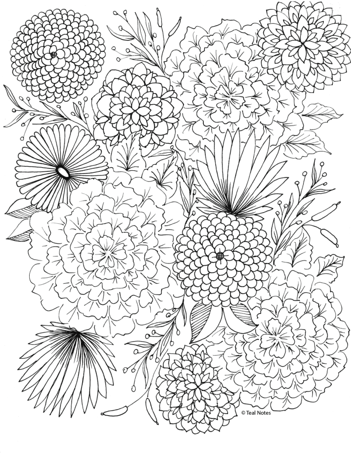 flowers you can print and color 25 printable adult coloring pages you can print and color can you color print and flowers