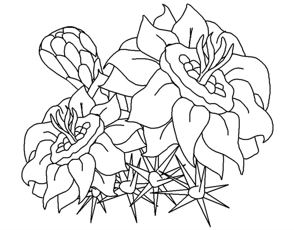 flowers you can print and color free printable flower coloring pages for kids best print and flowers can color you