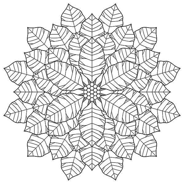 flowers you can print and color perfect geometric poinsettia flower drawing coloring page flowers print can and color you