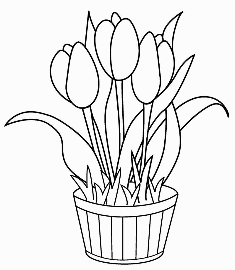 flowers you can print and color tulips coloring pages flower coloring pages insect flowers and print color you can