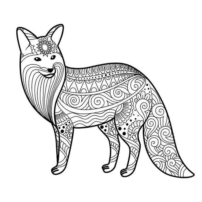 fox animal coloring pages cute fox coloring pages ideas for kids cute fox drawing fox coloring animal pages