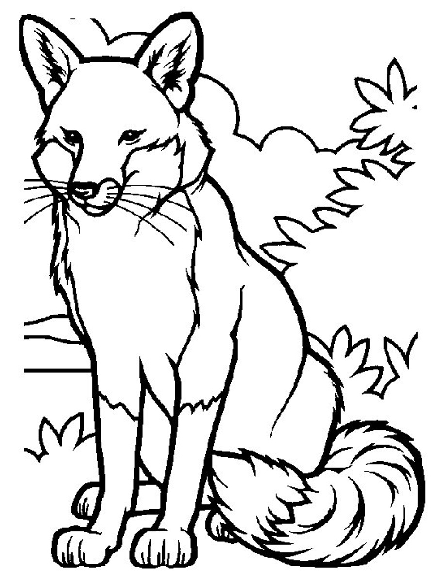 foxes coloring pages adorable fox coloring page stock illustration download pages coloring foxes