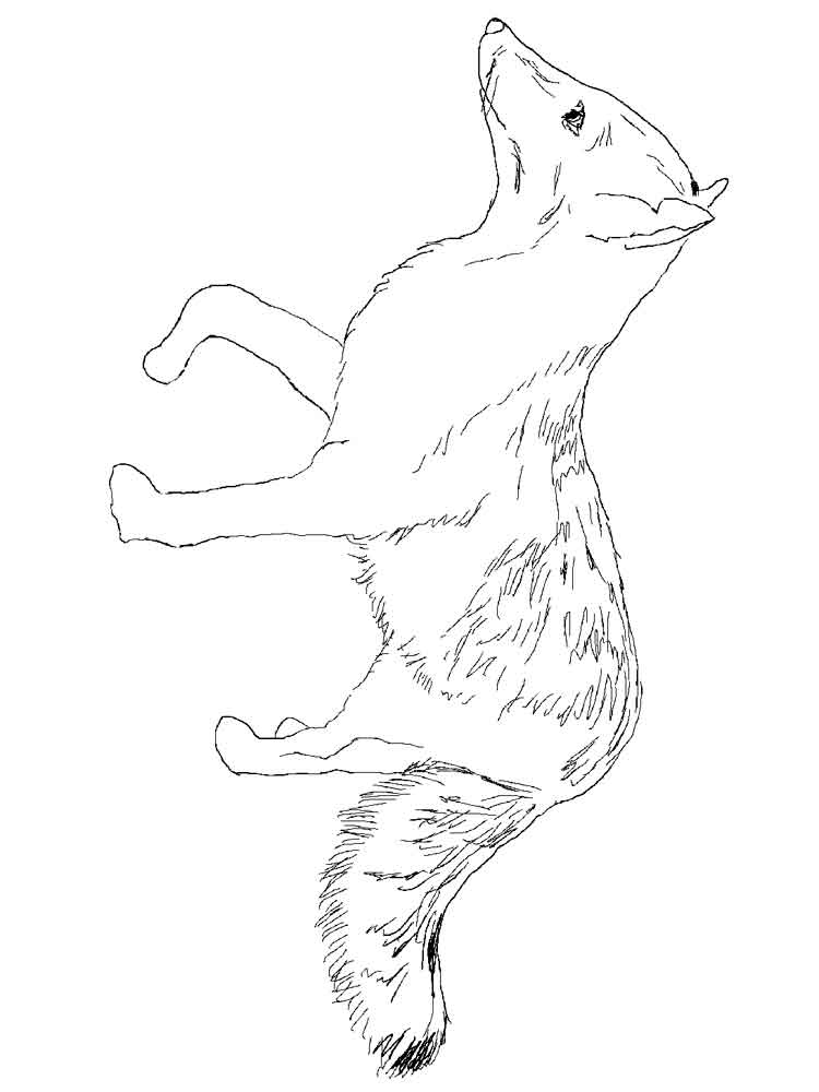 foxes coloring pages fox coloring pages download and print fox coloring pages foxes pages coloring 1 1