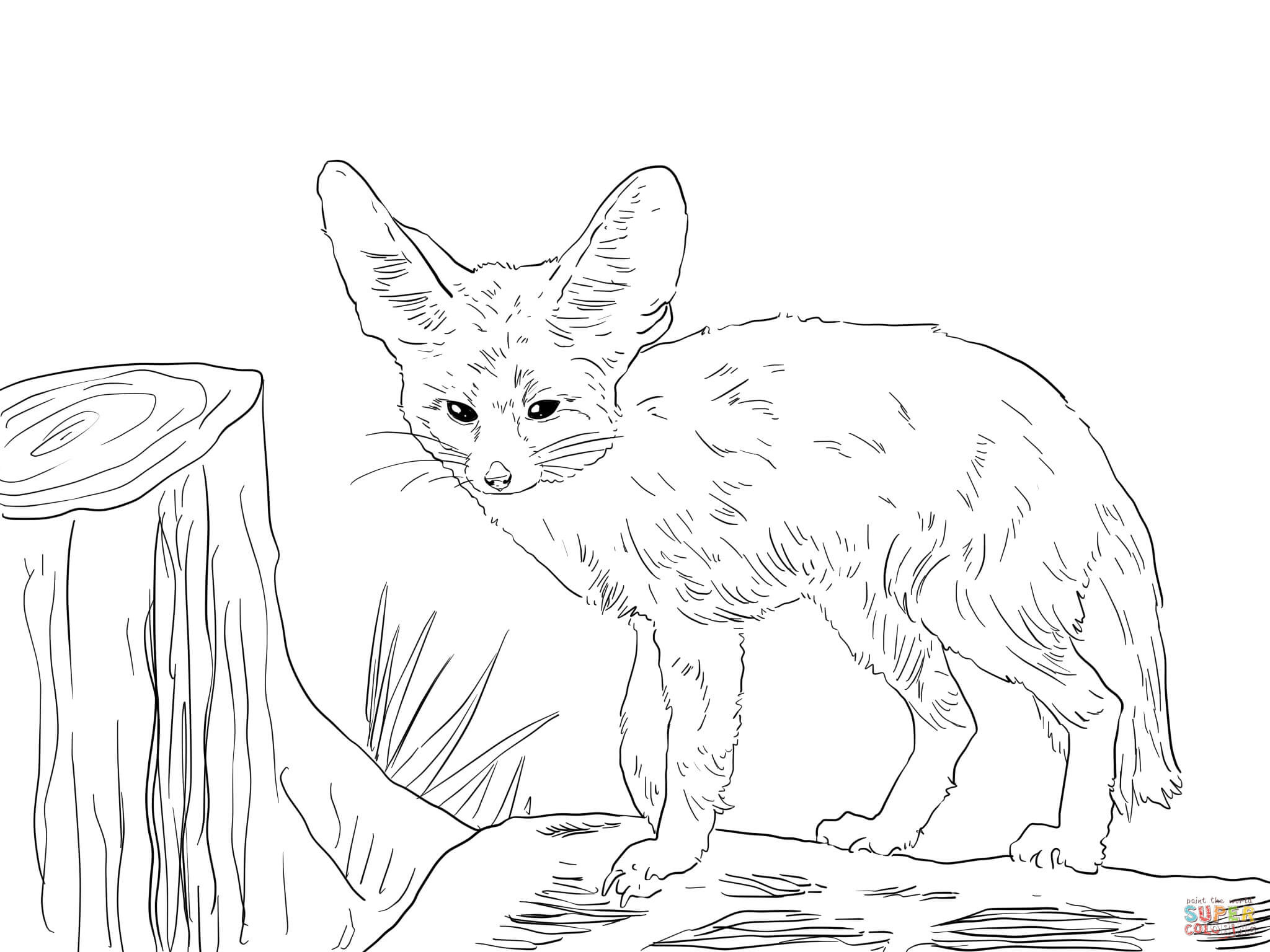 foxes coloring pages fox coloring pages to download and print for free pages foxes coloring