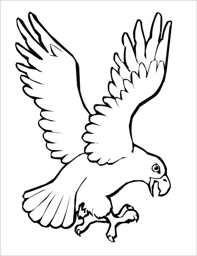 free bird coloring pages 12 best free printable bird coloring pages for kids bird free coloring pages