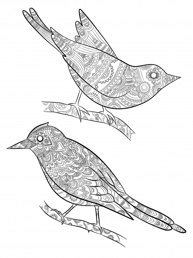 free bird coloring pages bird coloring pages to download and print for free coloring pages bird free