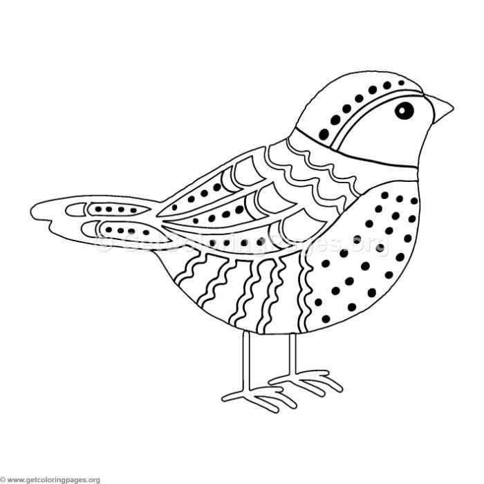 free bird coloring pages coloring pages for adults little wild birds for with bird pages coloring free