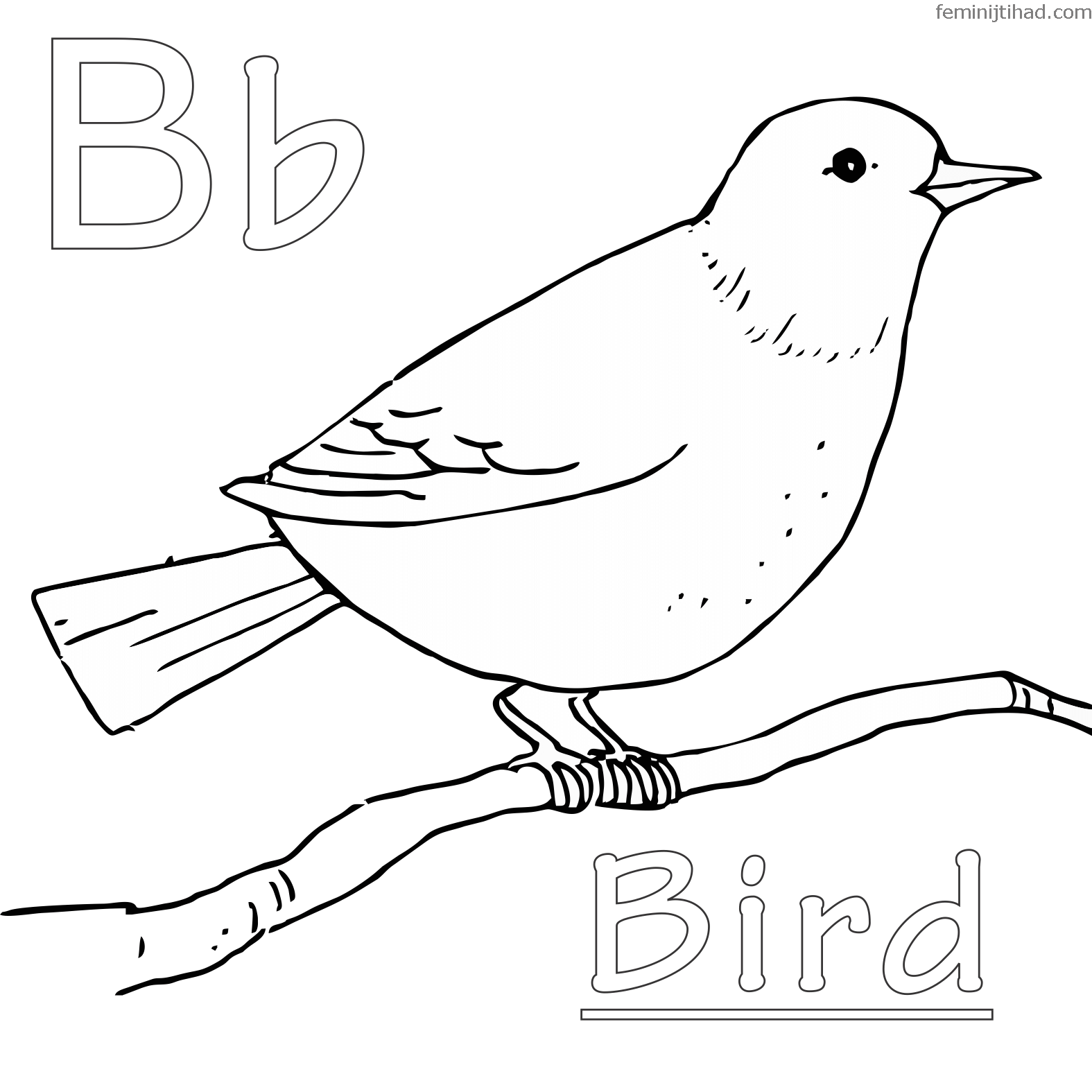 free bird coloring pages grateful dead bears coloring pages at getcoloringscom coloring bird free pages