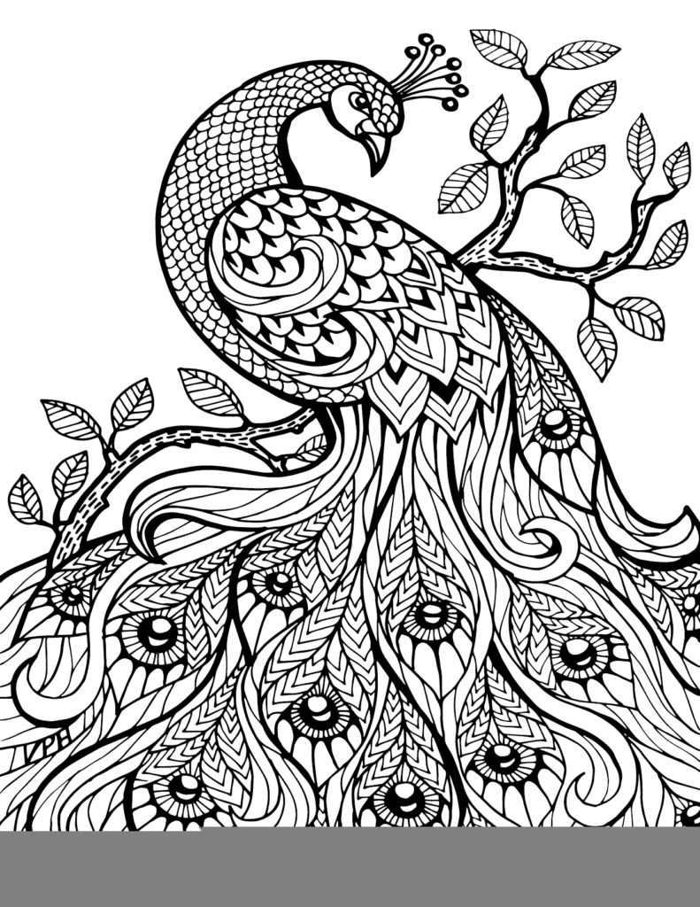 free doodle art to print and color coloring pages zentangle and adult coloring on zentangle color free print to doodle and art