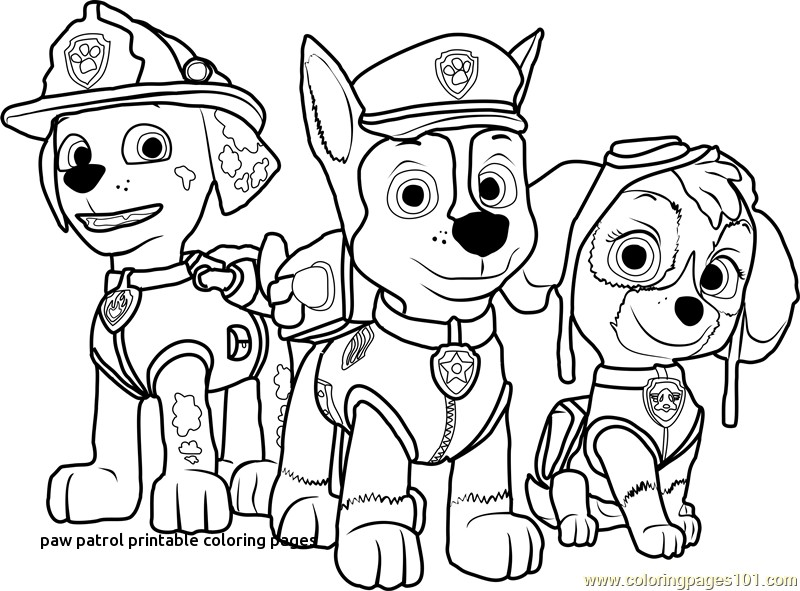 free paw patrol coloring pages free printable coloring pages paw patrol at getdrawings coloring pages paw patrol free