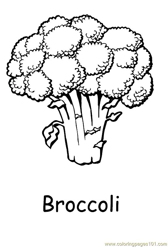 free printable coloring pages of vegetables coloring pages of fresh fruit and vegetables team colors coloring free of vegetables printable pages