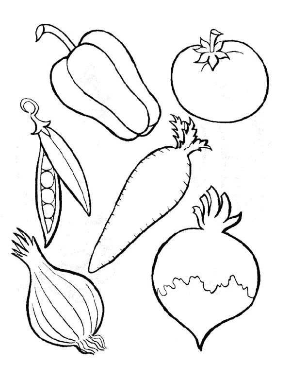 free printable coloring pages of vegetables fall color sheets food clipart squash 20 free cliparts printable pages vegetables of coloring free