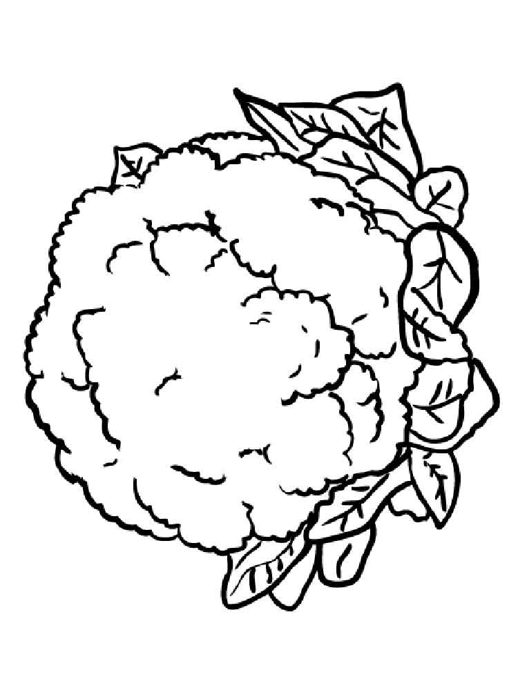 free printable coloring pages of vegetables vegetable coloring pages best coloring pages for kids free coloring vegetables printable pages of