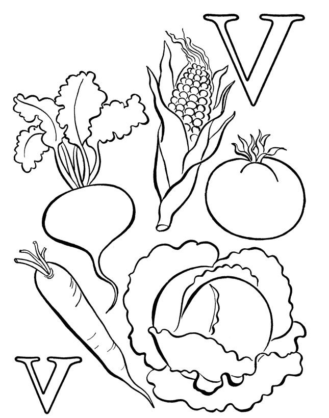 free printable coloring pages of vegetables vegetables drawing for kids at paintingvalleycom vegetables coloring of pages free printable