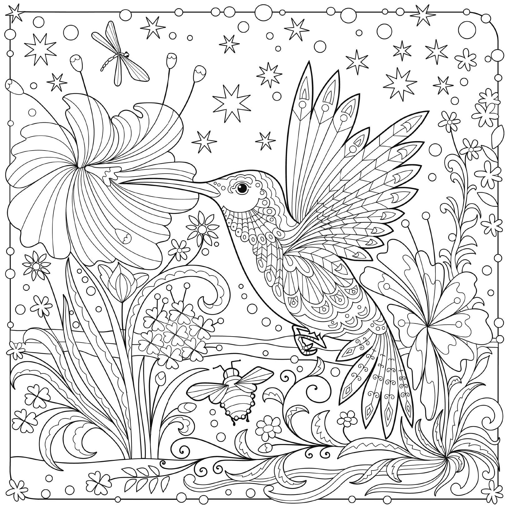 free printable hummingbird coloring pages hummingbird coloring page free printable coloring pages printable free coloring hummingbird pages