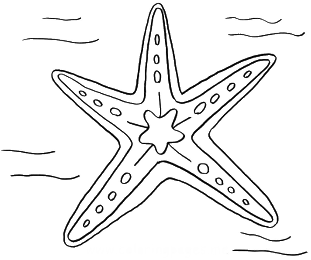free printable starfish coloring pages starfish coloring pages for kids at getdrawings free printable free coloring pages starfish