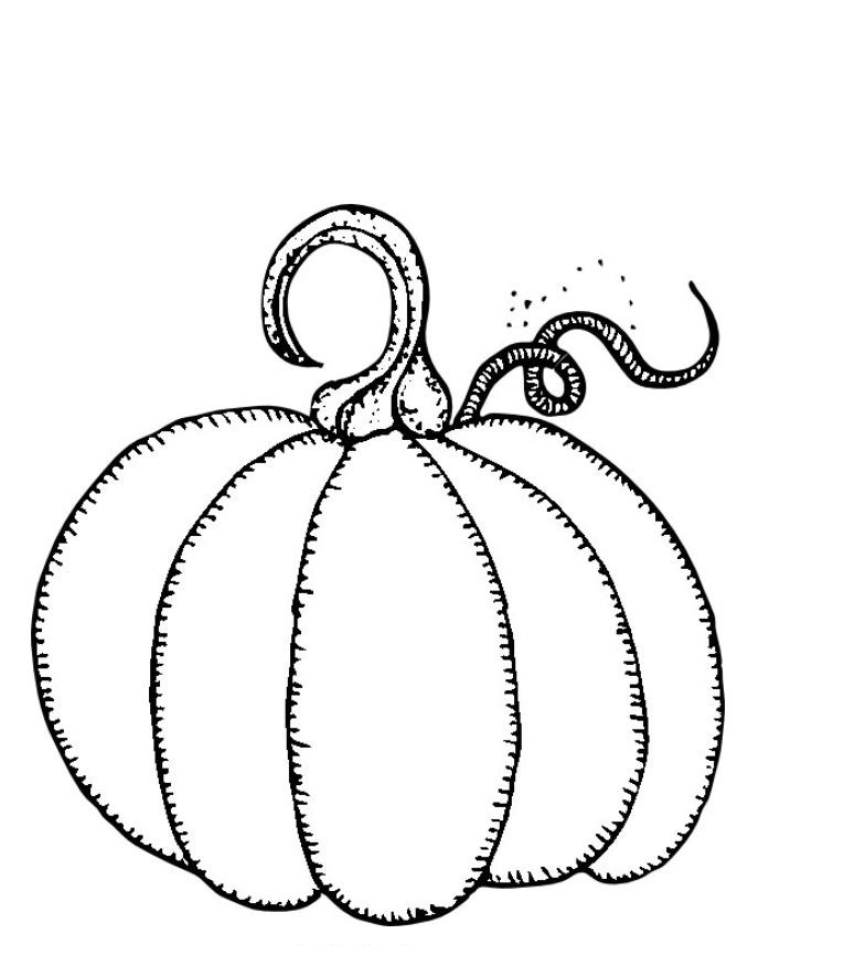 free pumpkin coloring pages printable 5 best images of free printable small pumpkins five coloring printable free pumpkin pages