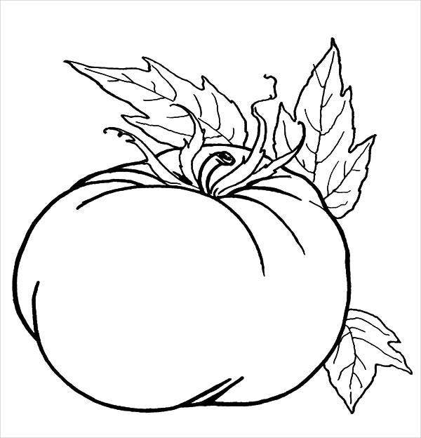 free pumpkin coloring pages printable 9 pumpkin coloring pages jpg ai illustrator download pumpkin free coloring printable pages