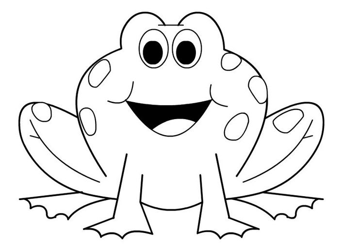 frog face coloring page free outline of a frog download free clip art free clip coloring frog page face