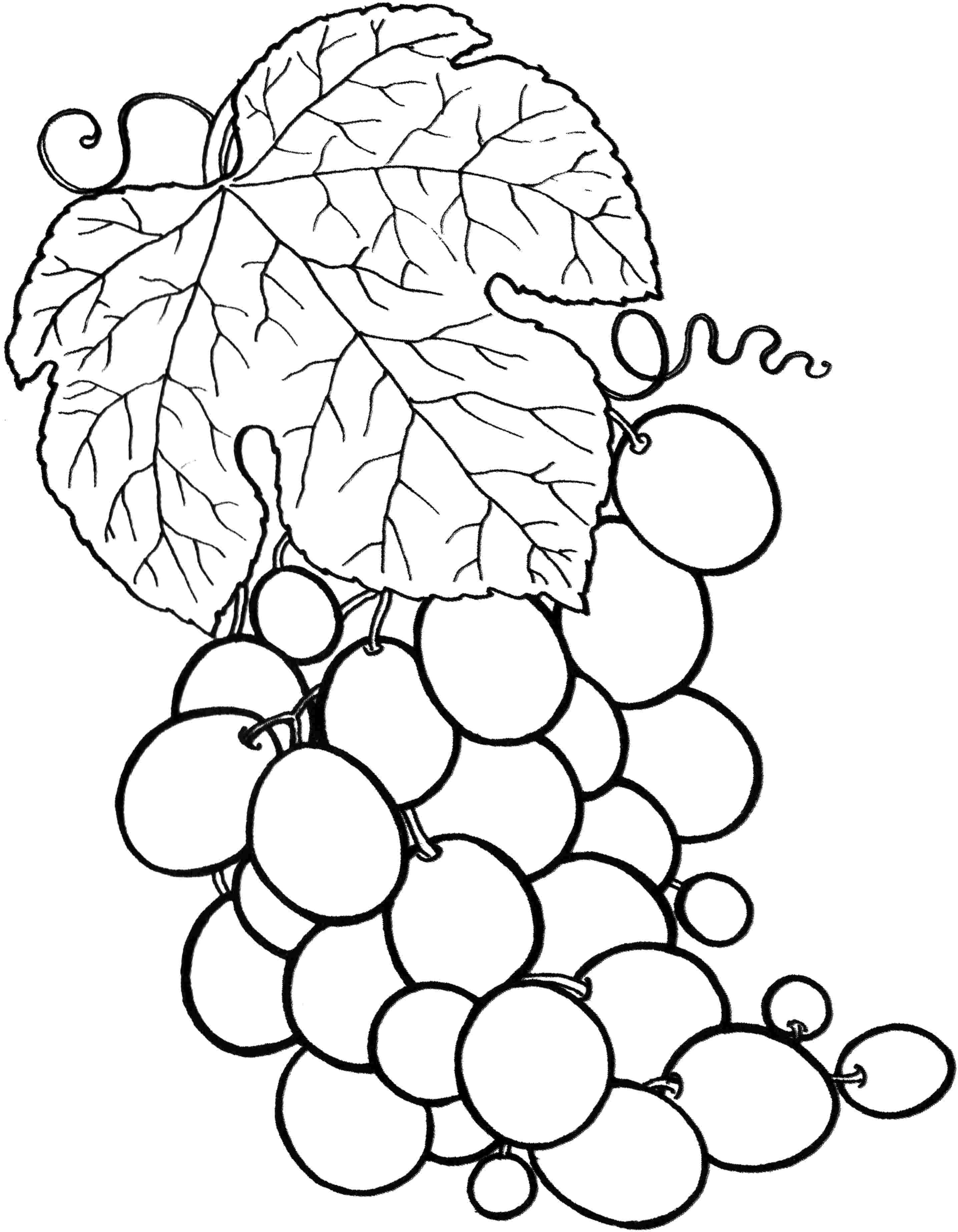 fruit coloring cartoon fruits coloring pages crafts and worksheets for fruit coloring