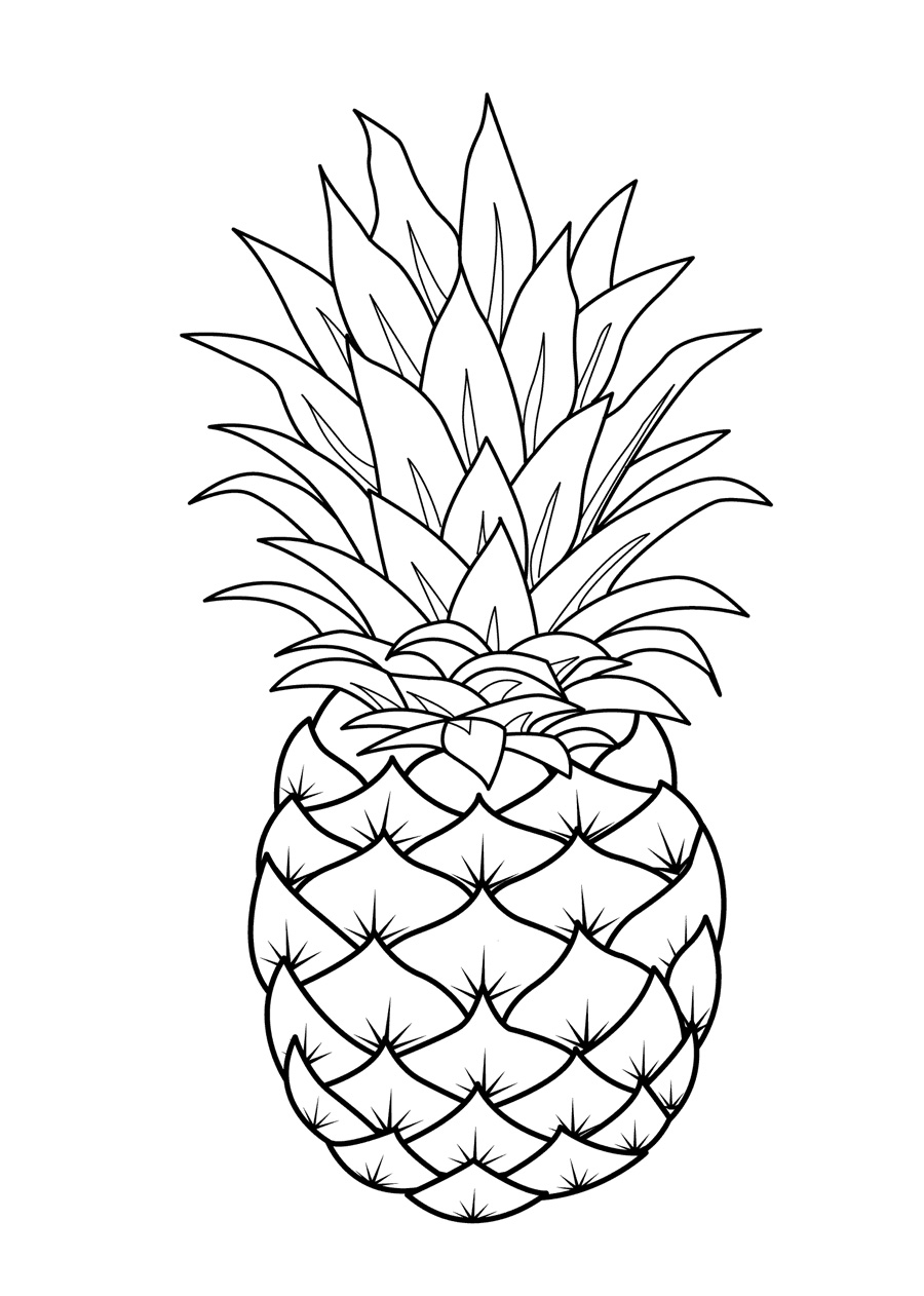 fruit coloring free printable fruit coloring pages for kids coloring fruit