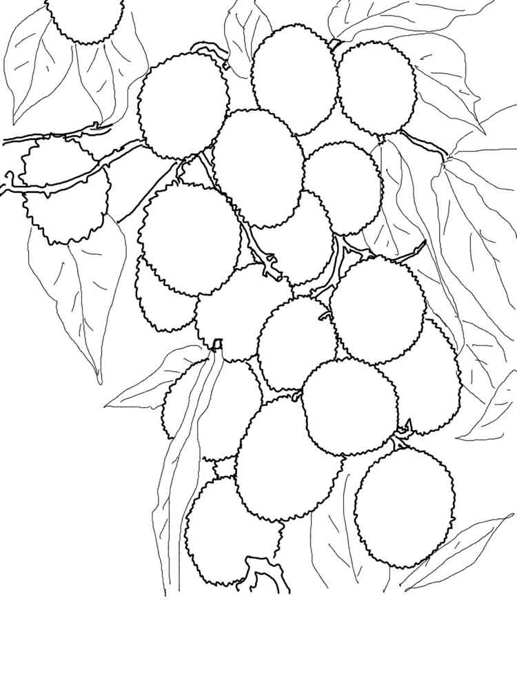 fruit tree coloring page apple fruit coloring pages printable free printable kids coloring tree fruit page