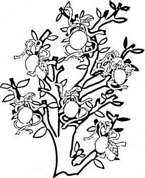 fruit tree coloring page coloring pages fruit trees bunkhousequilting coloring pages page coloring tree fruit